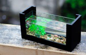 aquarium accessoires