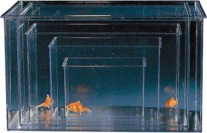 aquarium klein