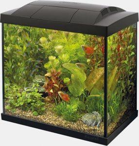 kit aquarium
